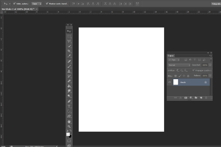 guia de usuario illustrator