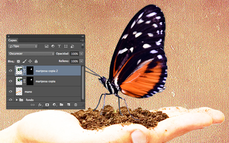 mariposa-oscurecer