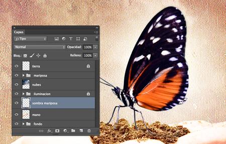 mariposa-sombra